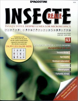 INSECTE_REALE_(ROM)NR_43_-_2013