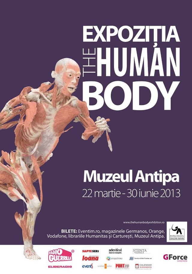 human_body